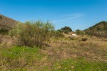 www.jmgstudio.es36.jpg