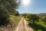 www.jmgstudio.es19.jpg