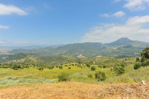 728846 - Plot for sale in Casares, Málaga, Spain