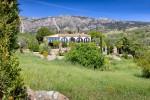 House and garden 2.jpg