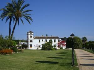 754211 - Finca en venta en Mijas Golf, Mijas, Málaga, España