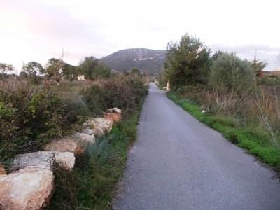 639461 - Land For sale in Llucmajor, Mallorca, Baleares, Spain