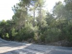 T1488 - Building Plot for sale in Son Toni, Sa Pobla, Mallorca, Baleares, Spain