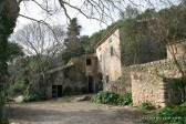 C1656 - Rustic Finca for sale in Pollença, Mallorca, Baleares, Spain