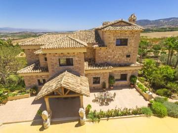 YPIS1916 - Villa for sale in Alhaurín de la Torre, Málaga, Spain