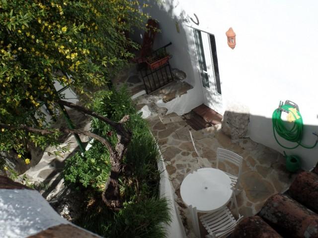 garden (15)