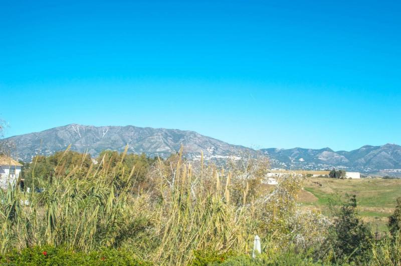 Views-2