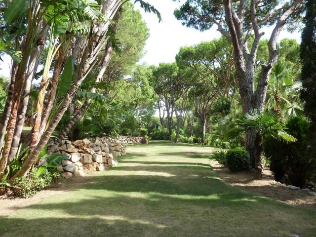 garden area2