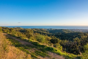 778798 - Commercial Plot for sale in La Mairena, Marbella, Málaga, Spain