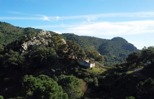 783178 - Plot for sale in Casares, Málaga, Spain