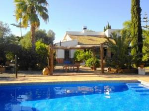 638731 - Country Home for sale in Pizarra, Málaga, Spain