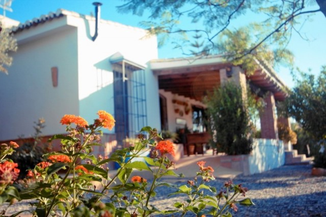 Villa (5)