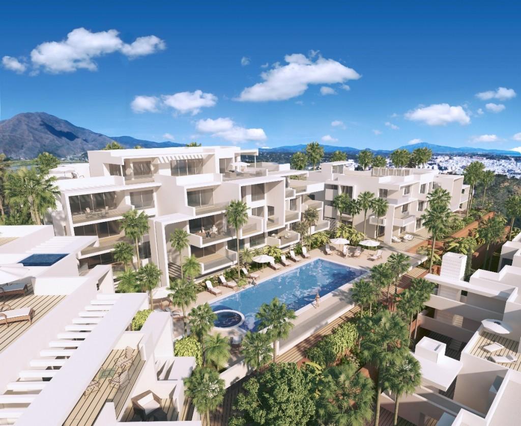 Buying A Property Playa De Fa
