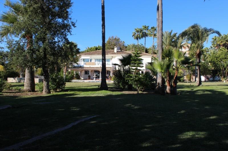 Garden, property