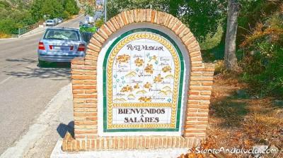 773780 - Building Plot For sale in Salares, Málaga, Spain