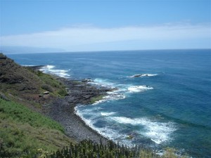 695390 - Farm For sale in Tenerife, Canarias, Spain