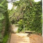 side garden (Medium)