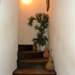 basement steps