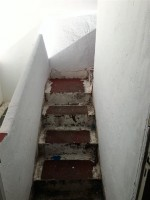 steps ugly top
