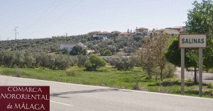 Cheap building plot in Archidona Malaga