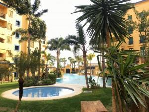 Cheap 3 bed apartment in Los Naranjos, Nueva Alcantara, San Pedro Beachside