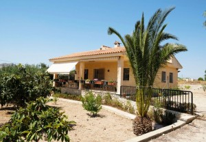 Villa for sale in San Vicente del Raspeig, Alicante, Spain