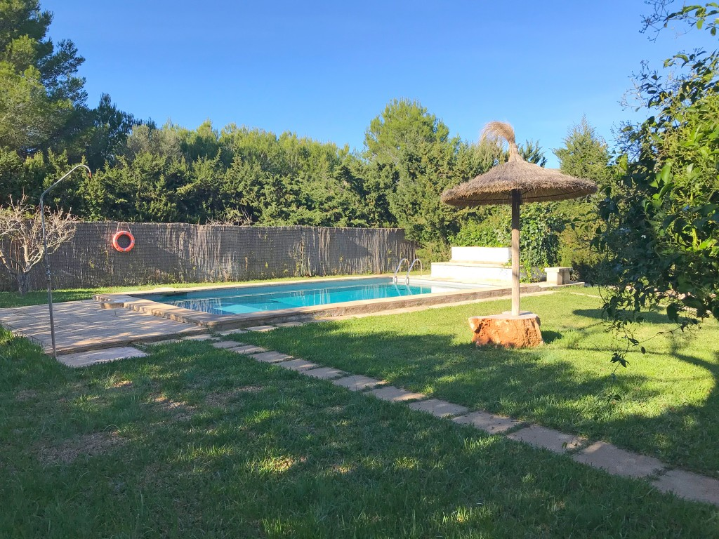 Garden and pool (9)