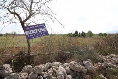 793834 - Terreno en venta en Algaida, Mallorca, Baleares, España