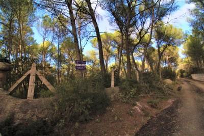 794735 - Terreno en venta en Algaida, Mallorca, Baleares, España