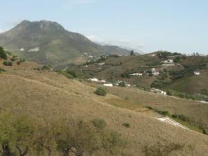 800226 - Land For sale in Cómpeta, Málaga, Spain
