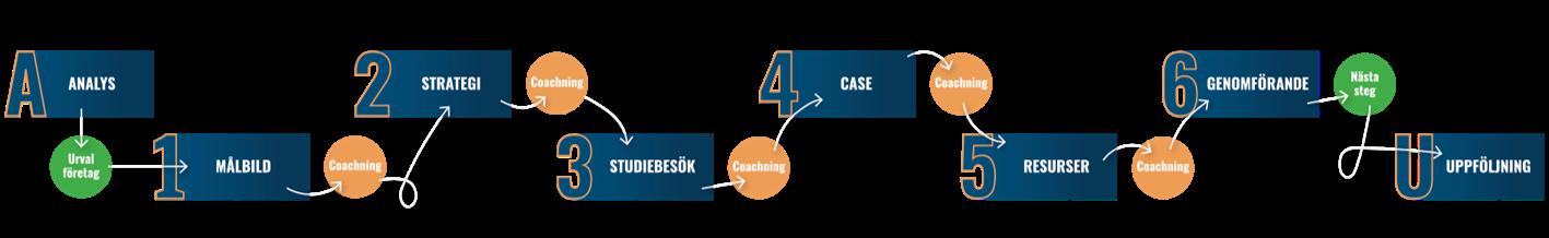 INDIGO-process-korrekt