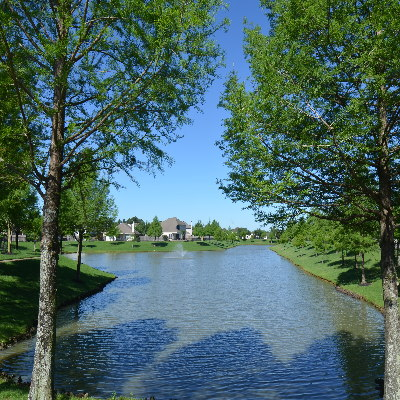Homes for Sale in Grant Meadows, Telge Ranch, Village of Indian trails, Forest Creek Farms,, Cypress, TX