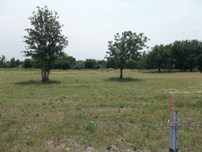 Farm & Ranch Sold: Fm 1689