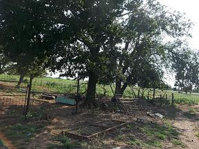 Farm & Ranch Sold: 860 CR 446