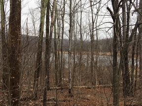 Hunter NY Residential Lots & Land Sold: $100,000