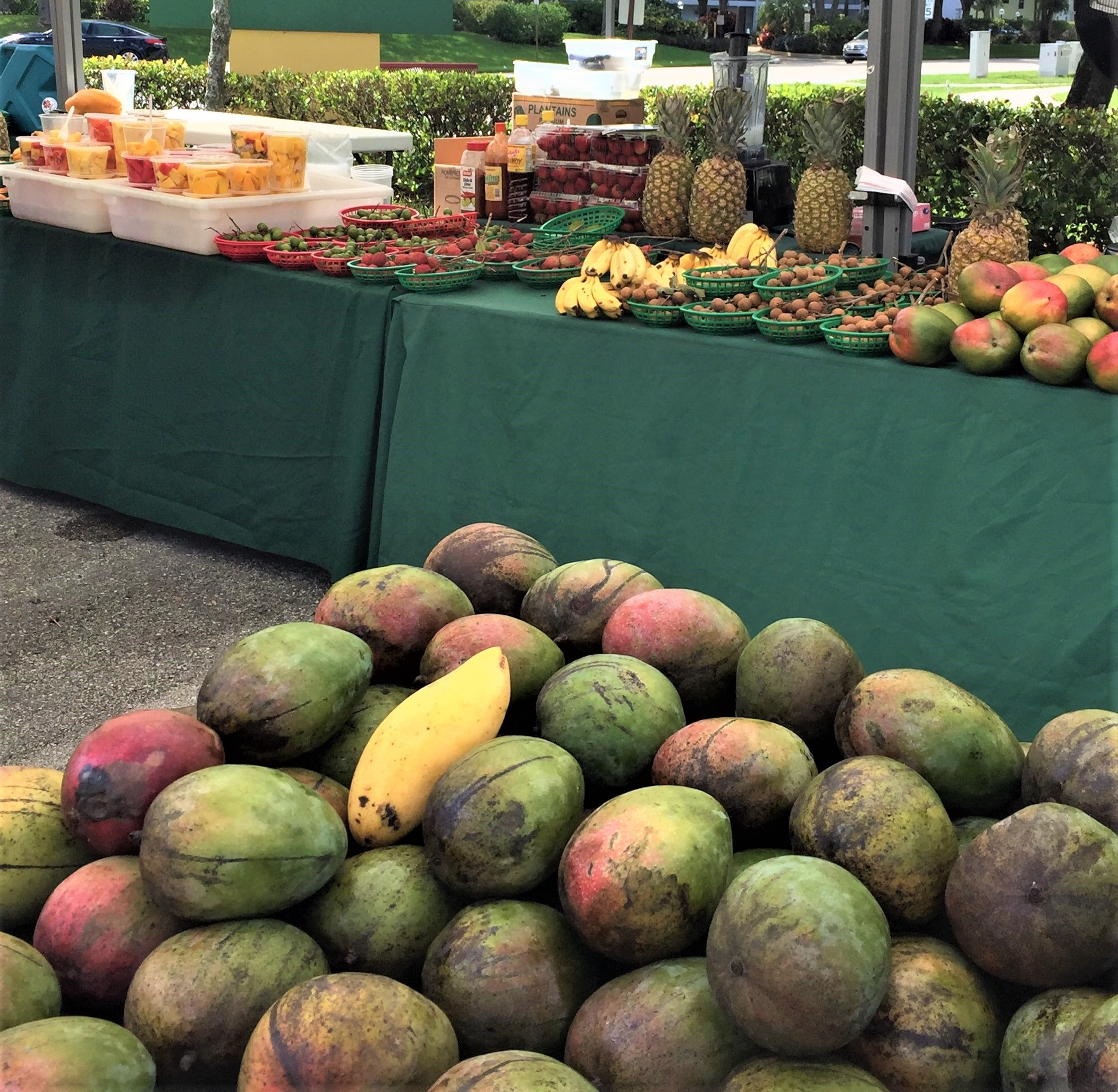 Welcome to Palm Aire's Farmers market