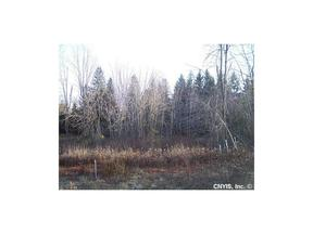 Wilna  NY Residential Lots & Land Sold: $45,000