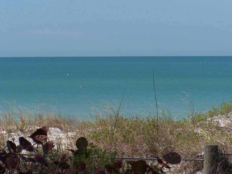 Beaches |