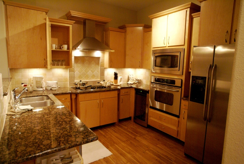 granite & stainless steel appliances