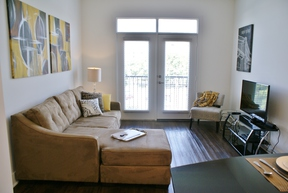 Furnished 2BDR Leased: 220 25th Avenue North  #629PCC2J