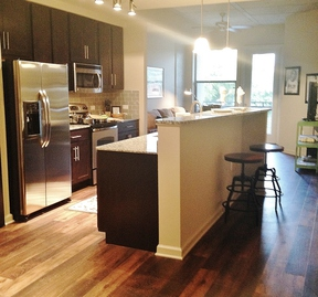 Nashville TN Furnished 1BDR Available 8/20 - 9/20: $106 /day...Midtown!