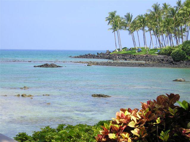 Hawaii Real Estate Waikoloa Lagoon