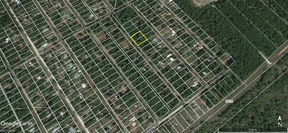 Residential Lots  For Sale: 248 John Street