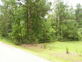 Residential Lots & Land Sold: 139 Maybelle Loop