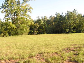 Residential Lots & Land : 556 Gandy Drive