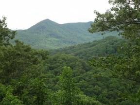 Residential Lots & Land Sold: 00 Santeetlah Ridge