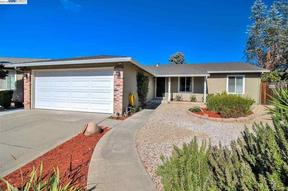 Single Family Home New: 33032 Marsh Hawk Ct