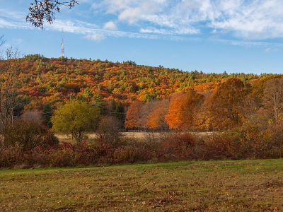 Homes for Sale in Norfolk County NOrth MA