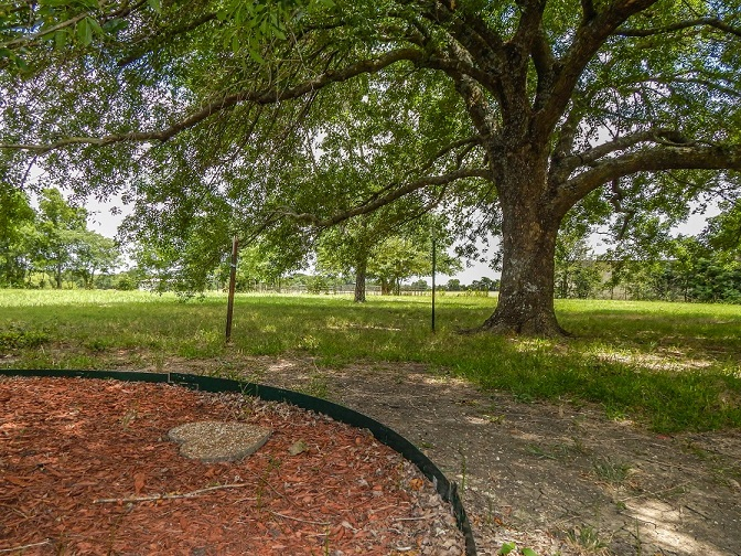 Sunnyvale Tx home with acreage DA Rock of Homes