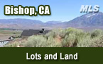Bishop CA Lots and Land for Sale
